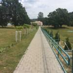 фото дорожки1 (2)